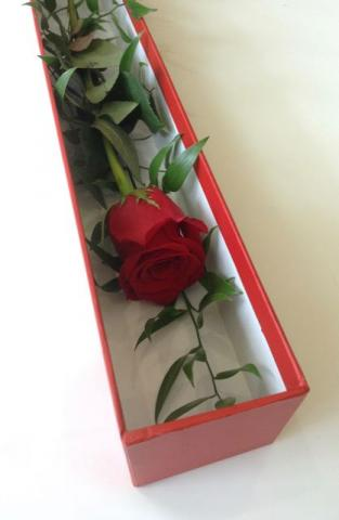 Boxed Single Rose